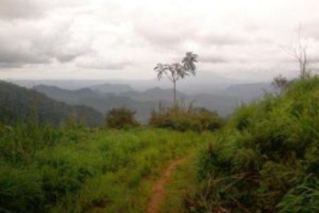 """Al via il Progetto """"Enter"""" in Camerun"""