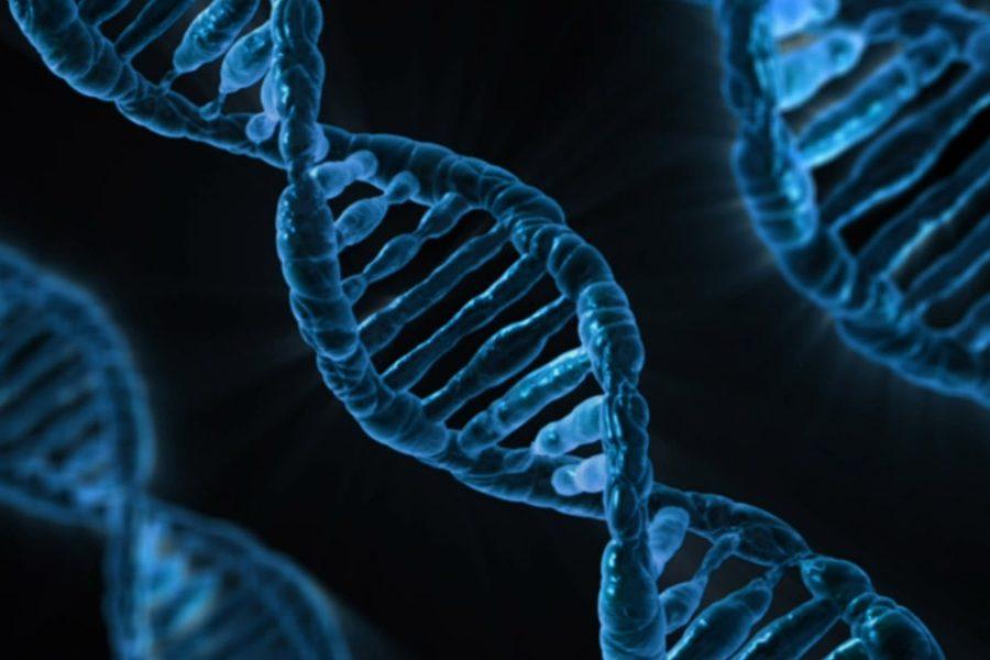 Nasce un network di ricercatori italiani per diventare sempre più protagonisti a livello internazionale.