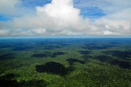 """C. Grandi, A. Otaviano, """"Amazzonia, peste & Covid: riflessioni tra due sponde"""""""